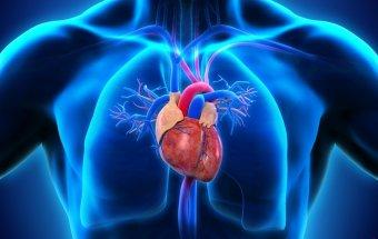 Simptomatik arterial hipertoniyalar