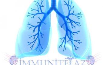 Ağciyərlərin xronik obstruktiv xəstəlikləri