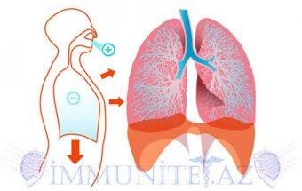 Ağciyərlərin hava sahələrinin genişlənməsi
