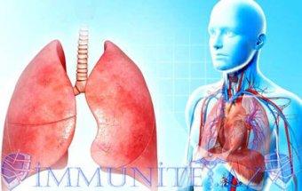 Ağciyərlərin idiopatik hemosiderozu
