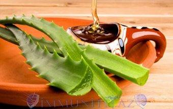 Aloe və balın möcüzəsi.